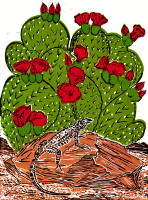 Host Cacti~Cochineal